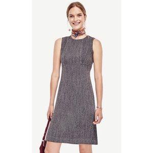 Ann Taylor tweed seamed shift dress grey no sleeve